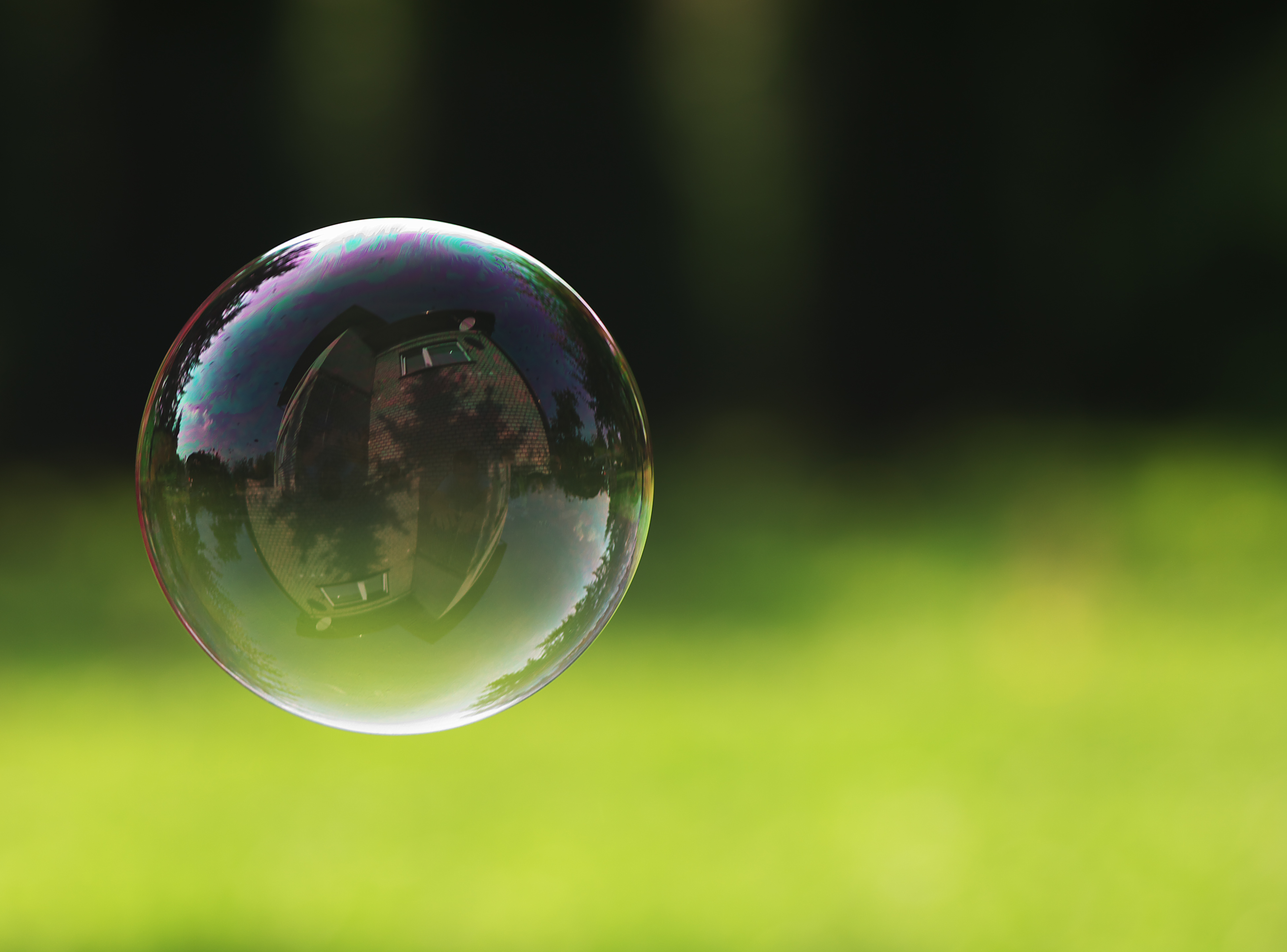Living bubble free, by joy schroeder